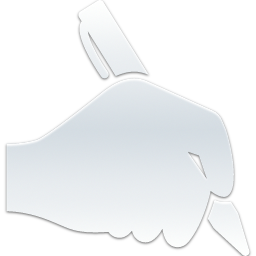 Hand_holding_up_a_pen_256 SILVER